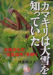 20071115-カマキリ