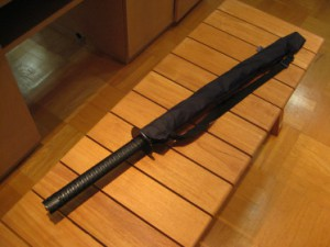 20100908-カタナ
