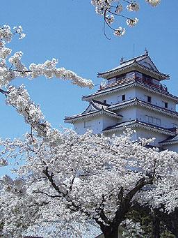 20080401-桜