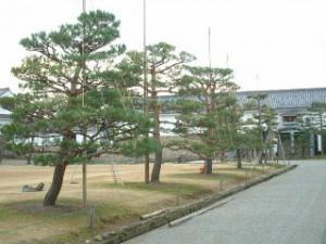 20061207-519[1]
